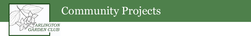 Community-Projects-header
